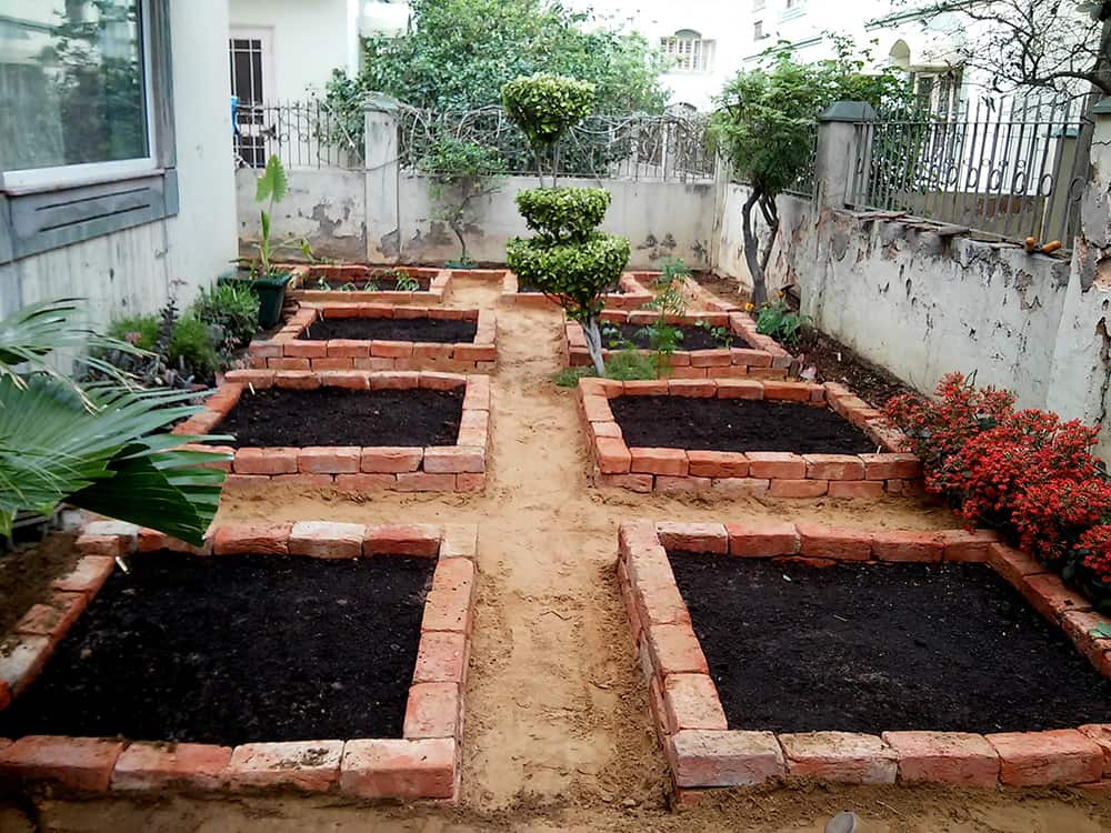 Small Areas Vegetable Gardens Planners In India ...